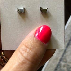 Jewelry - BNWOT stainless steel dog stud earrings